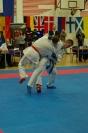Harasuto World Karate Cup 2013