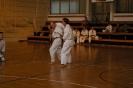 Karate sumer Camp Croatia 2013