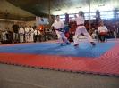 Majstrovstvá Slovenska 2012 Partizánske