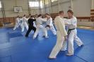 Seminár Aikido-Karate_12