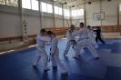 Seminár Aikido-Karate_9
