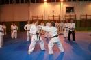 Seminár Goju ryu karate_1