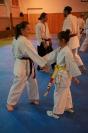 Seminár Goju ryu karate_3