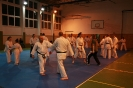 Seminár Goju ryu karate_4