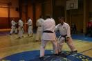 Seminar T.Ogawa_2