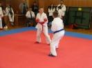 Shito Ryu Open Nové Zámky 2013