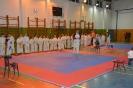 Vianočný turnaj 2013